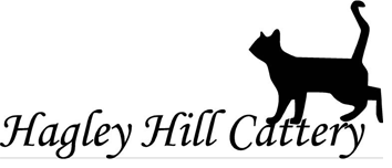 Hagley Hill Cattery